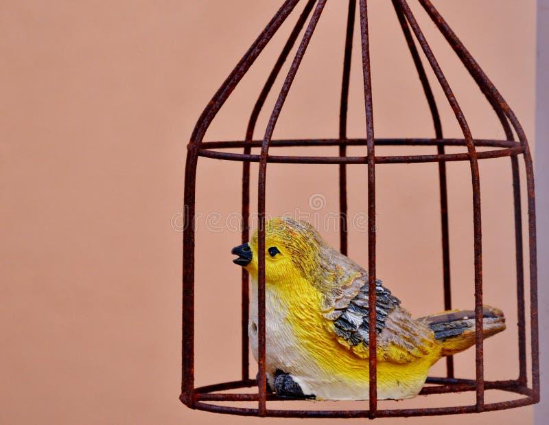 Decoração do pássaro e da gaiola imagem de stock royalty free