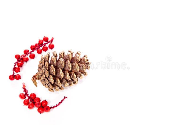 Decoração do pinecone do ouro Cones pintados pulverizador do pinho vermelho traditio imagem de stock royalty free