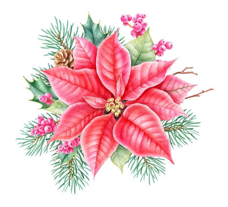 Decoração floral do Natal Ilustração botânica do watercolour do desenho da mão ilustração royalty free