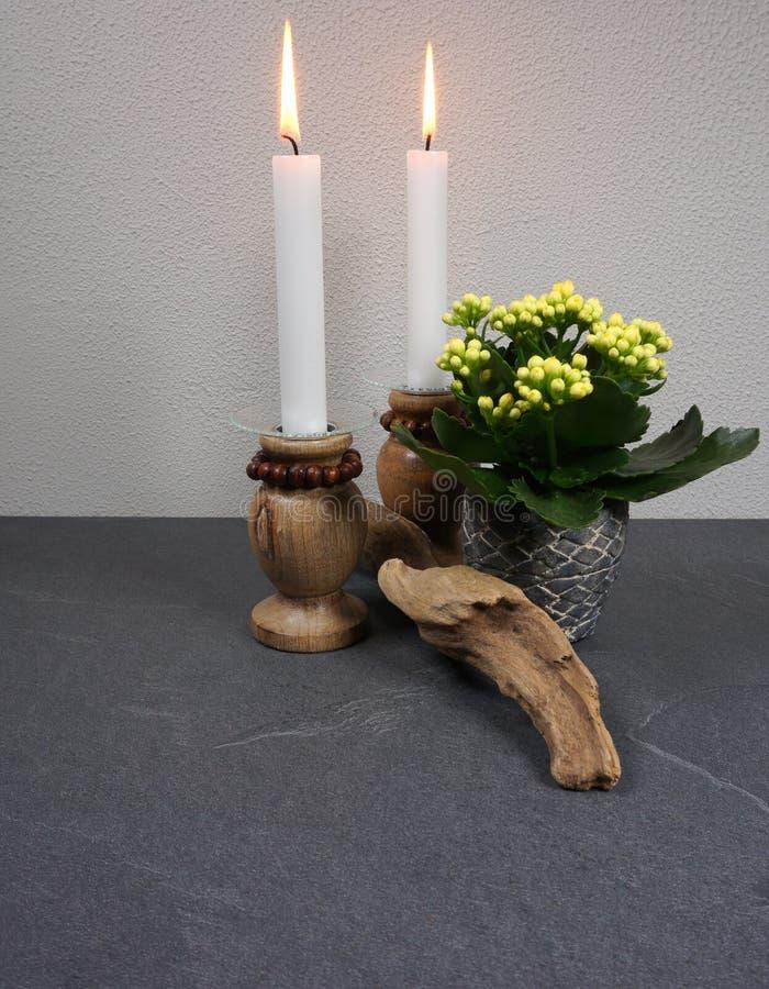 Decoração para o ambiente da casa com o blossfeldiana do kalanchoe da vela e madeira lançada à costa no fundo de madeira cinzento fotos de stock