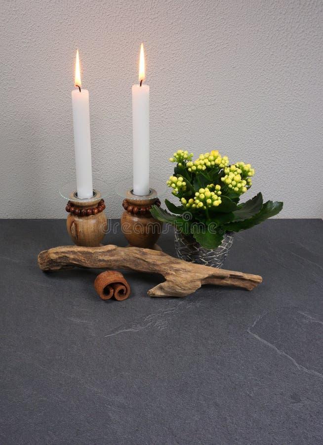 Decoração para o ambiente da casa com o blossfeldiana do kalanchoe da vela e madeira lançada à costa no fundo de madeira cinzento fotografia de stock royalty free