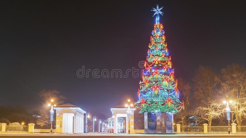 Decoração St Petersburg do Natal Árvore de abeto do Natal no o seu foto de stock