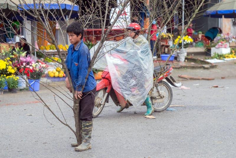 Decorações chinesas do ano novo em Vietname fotos de stock