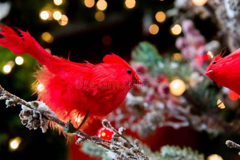 Decorações do Natal, pássaro vermelho e luzes na árvore fotografia de stock