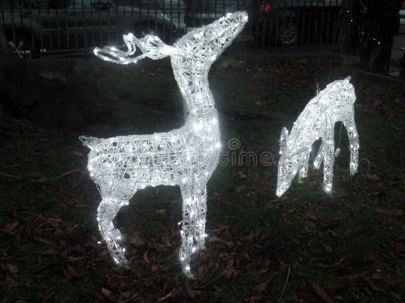 Decorações exteriores brancas iluminadas do Natal imagens de stock