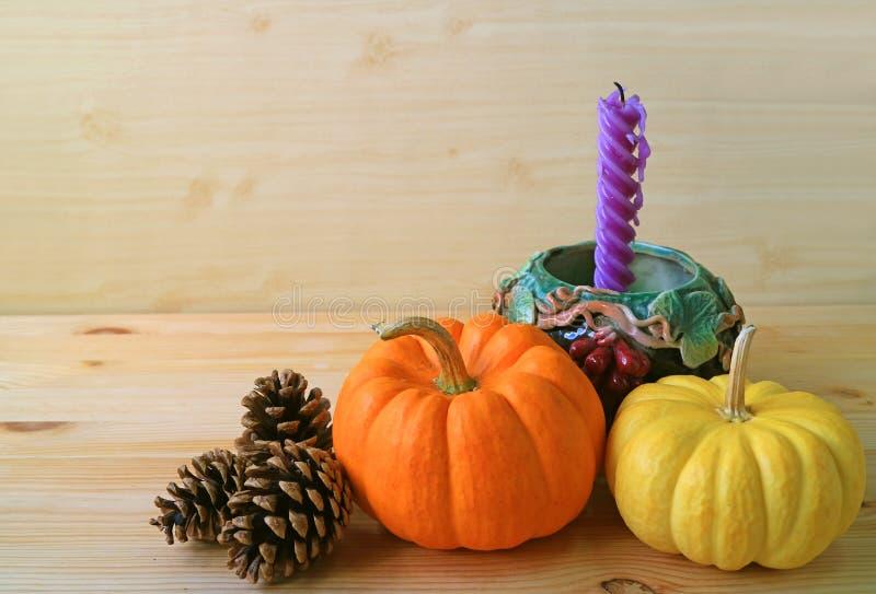 Decorações sazonais minimalistas com as abóboras maduras da cor vibrante, os cones do pinho e vela roxa no suporte do motivo da u fotos de stock