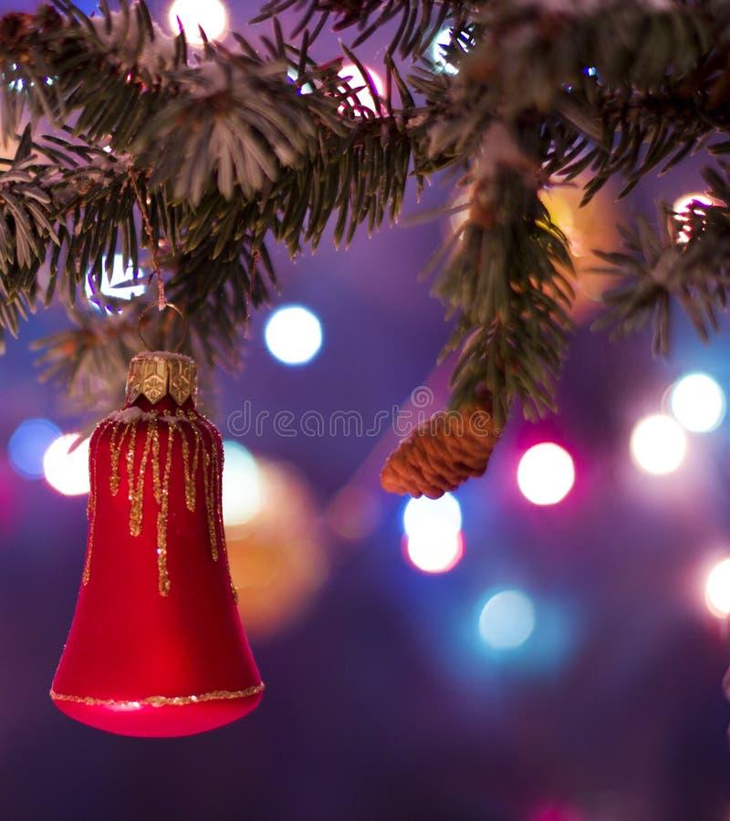 Decorações vermelhas do brinquedo do sino em ramos de árvore fotos de stock royalty free