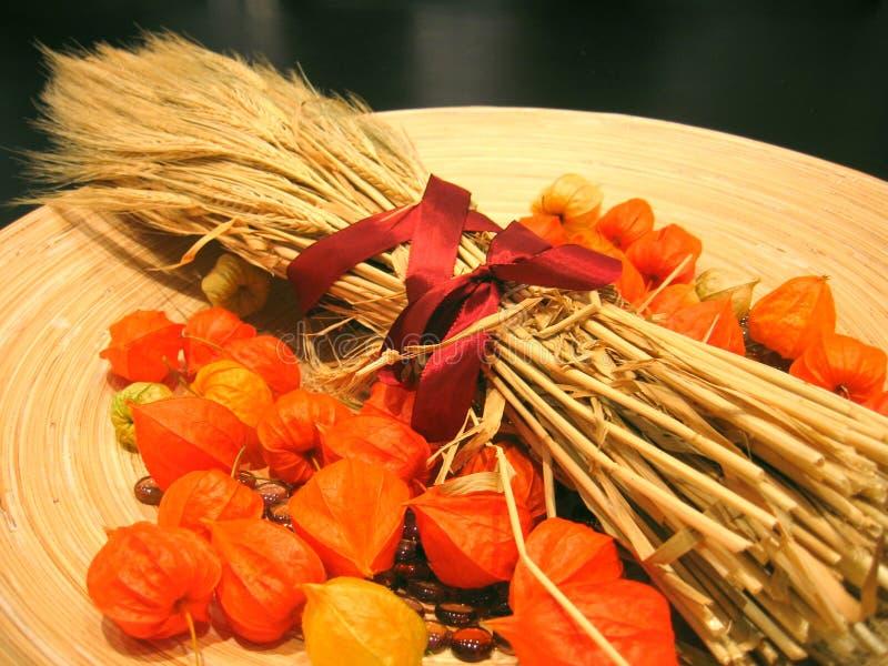 Decoración 3 del otoño imagen de archivo libre de regalías