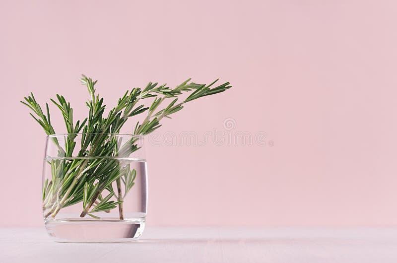 Decoración casera de la elegancia - romero fresco del ramo fragante en el florero de cristal en la tabla blanca y el fondo rosado fotografía de archivo
