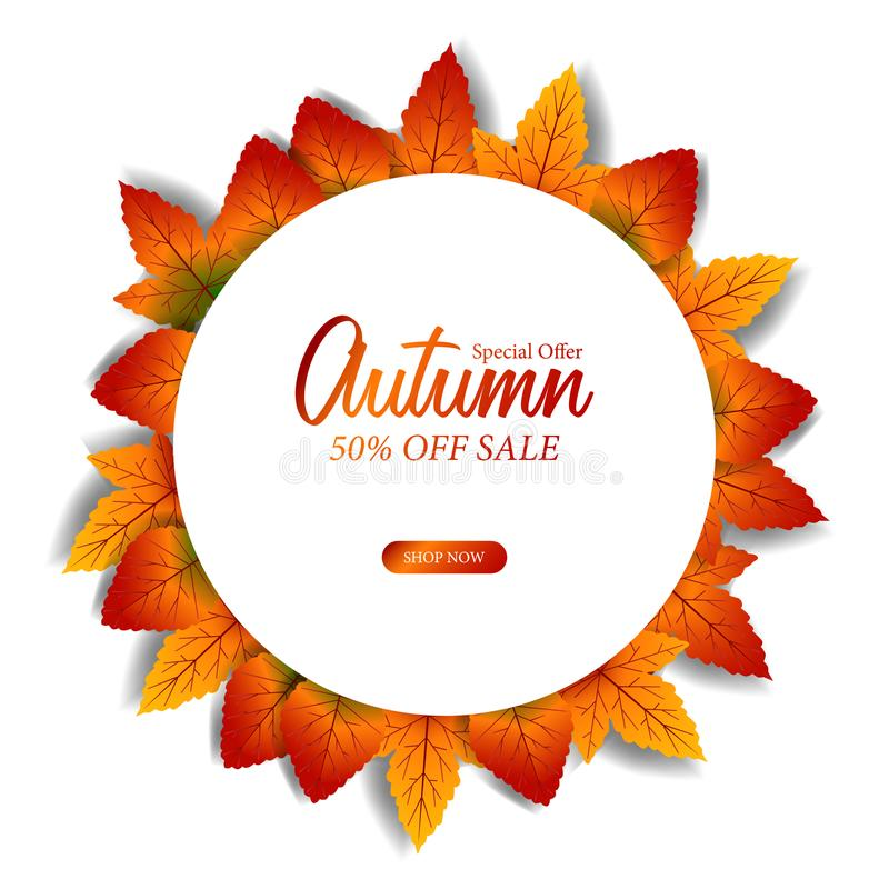 Decoración de la caída de las hojas de otoño con el círculo blanco de la visión superior plantilla de la oferta de la venta Ilust ilustración del vector