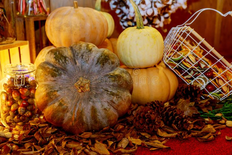 Decoración de la cosecha de la naturaleza del otoño en la calabaza para el día de la acción de gracias imagen de archivo