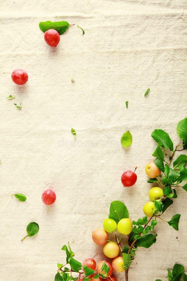 Decoración de la esquina de arándanos frescos foto de archivo