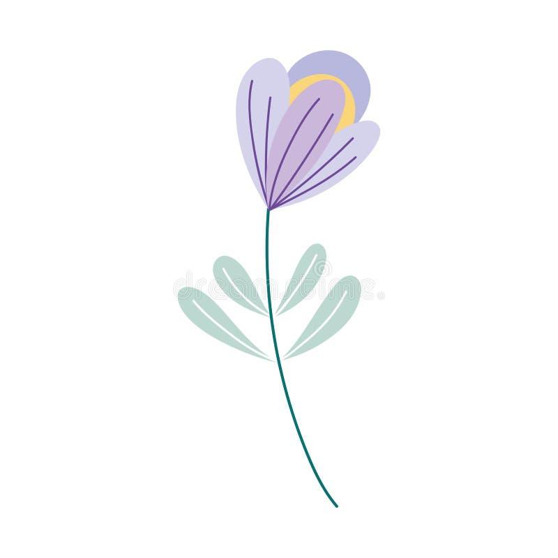 Decoración de la naturaleza botánica de la hoja de flores icono aislado ilustración del vector