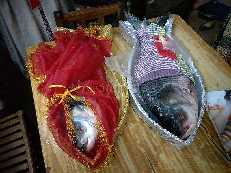 Decoración de los pescados fotos de archivo libres de regalías