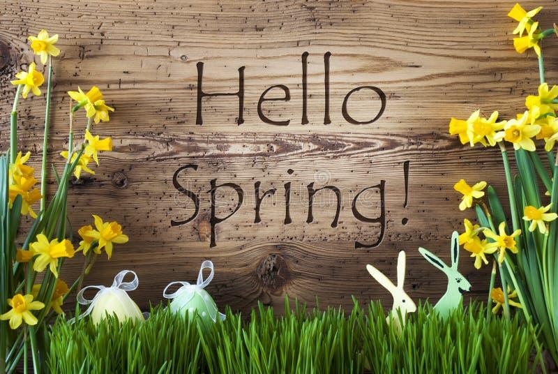 Decoración de Pascua, Gras, primavera del texto hola fotos de archivo libres de regalías
