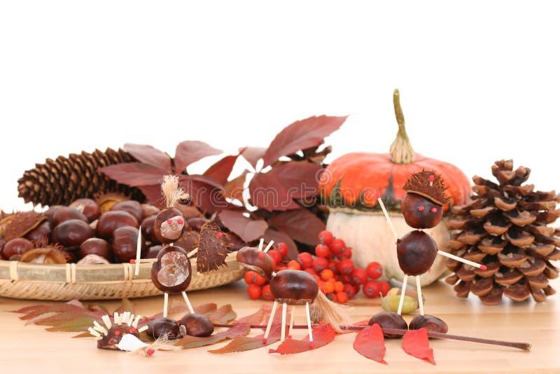 Decoración del otoño imagen de archivo libre de regalías