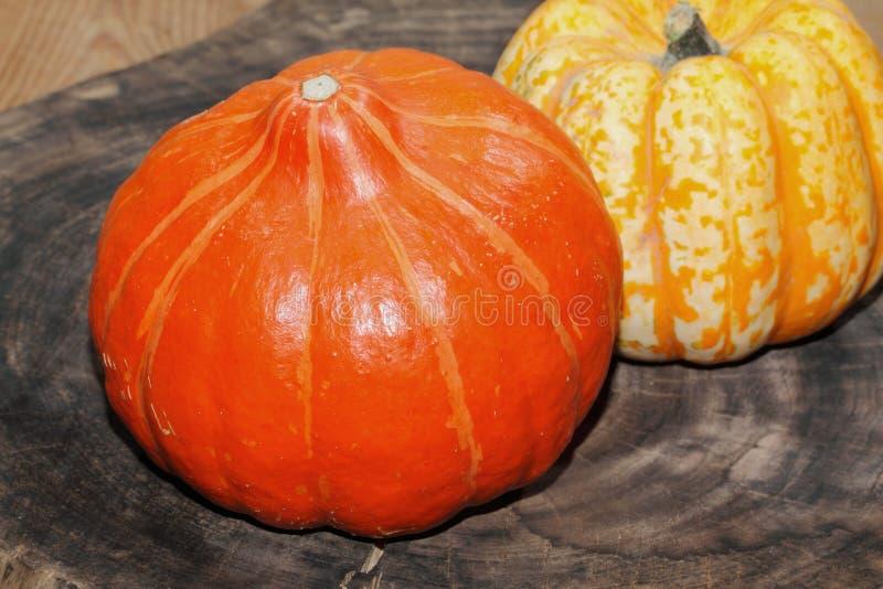 Decoración del otoño, calabaza, calabaza foto de archivo libre de regalías