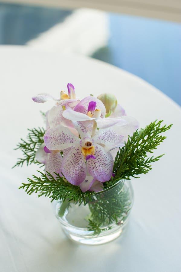 Decoración en casa orquídeas en pequeños floreros de cristal imagenes de archivo