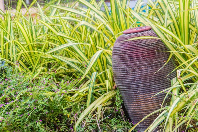 Decoración verde del jardín con la fuente de la cerámica de la arcilla Tarro viejo de la arcilla imagen de archivo