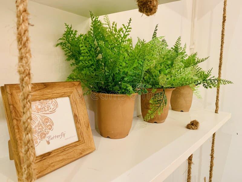 Decoración, vintage, de madera, cuerda, pote de la planta, imagen fotos de archivo libres de regalías