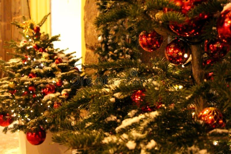 Decoraciones de la Navidad en el árbol de navidad en colores rojos bajo la forma de primer de las bolas En la calle o en la yarda imágenes de archivo libres de regalías