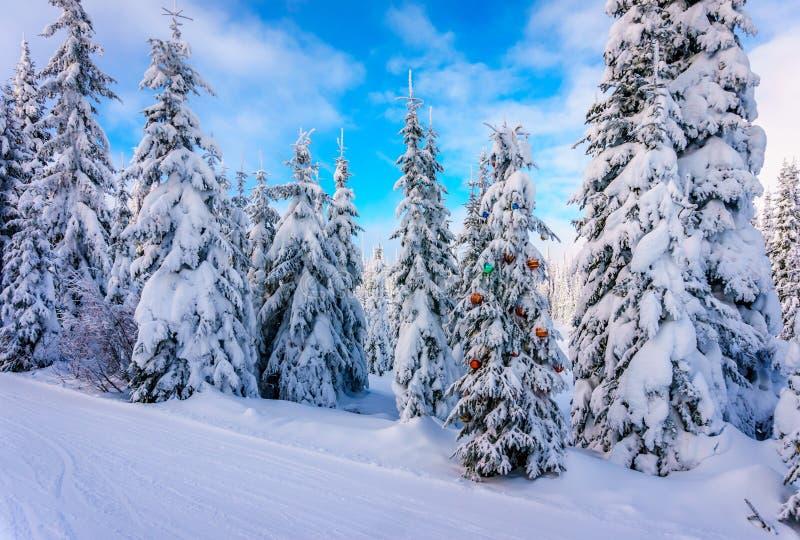 Decoraciones de la Navidad en un árbol de abeto nevado en el bosque del invierno imágenes de archivo libres de regalías