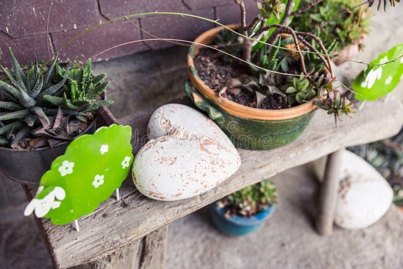 Decoraciones elegantes lamentables del jardín en banco de madera foto de archivo