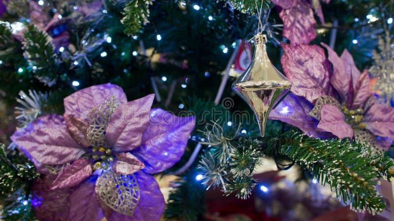 Decoraciones Preciosas De La Navidad Imagen de archivo Imagen de