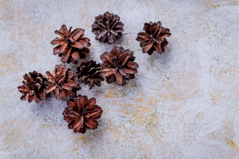 Decorador del florista que hace la guirnalda de la Navidad hecha a mano en una tabla blanca Afición del ` s de las mujeres Prepar foto de archivo libre de regalías