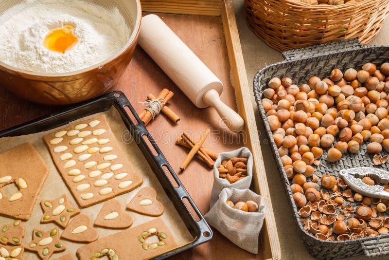 Decorando os biscoitos do pão-de-espécie nuts imediatamente antes do cozimento imagem de stock royalty free