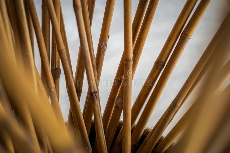 Decorate Bamboo stick. In the big water jar royalty free stock photos