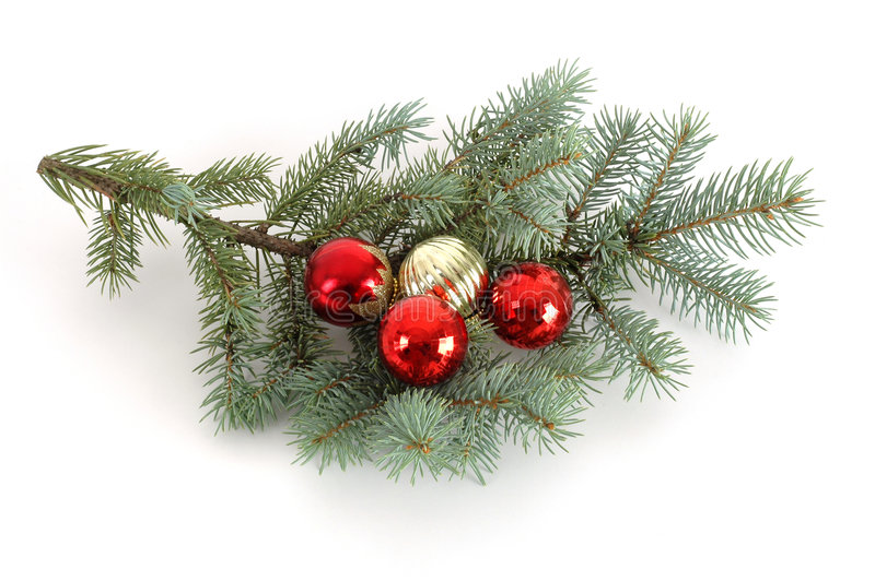 Download Decorated Christmas Bough stock photo. Image of gold, christmas - 1338312