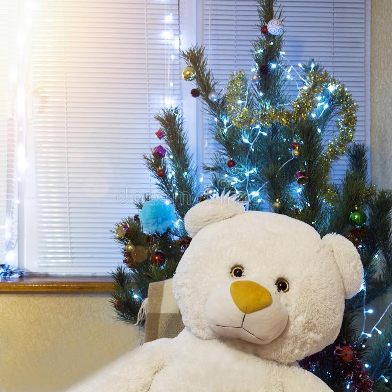 Decorated Christmas tree and big teddy bear. Cute New Year present under shining pine royalty free stock image