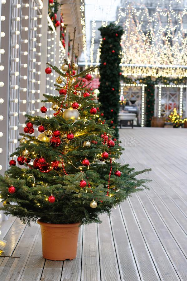Decorated Christmas tree in pot on the street at the Festival `Journey to Christmas`. In Moscow stock photos