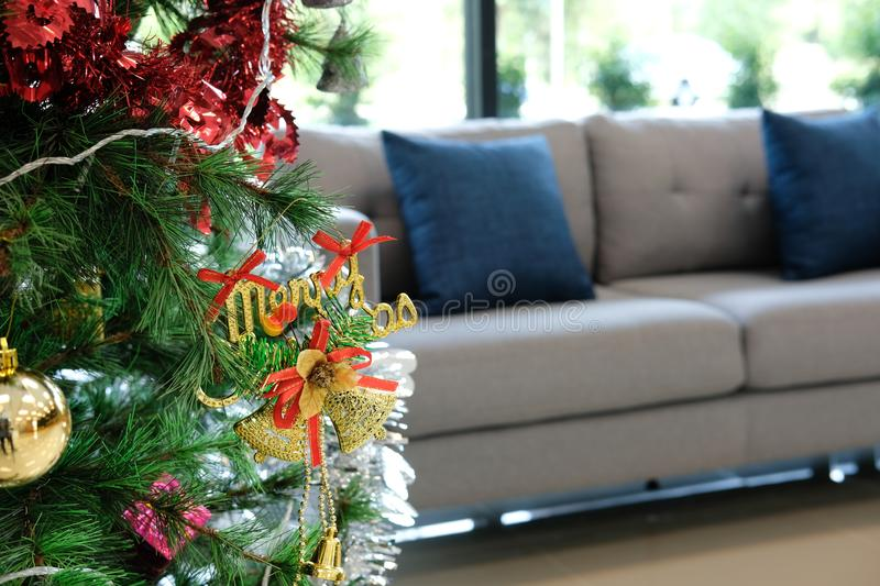 Decorated christmas tree & sofa couch in living room. xmas holiday celebration in december. Decorated christmas tree & gray sofa couch in living room. xmas stock image