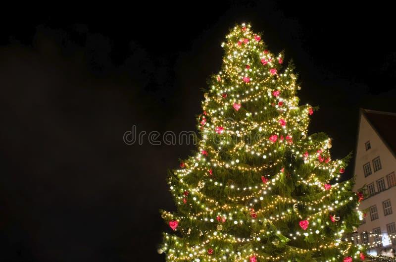 Decorated Christmas tree in Town Hall Square - Tallinn, Estonia. stock image