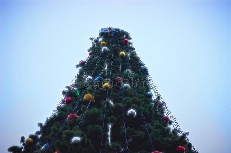 decorated christmas tree in a town square stock image