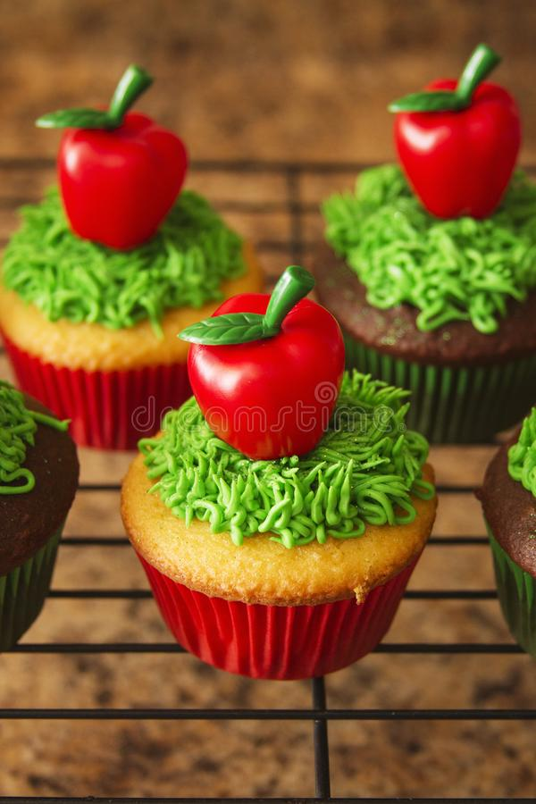 Decorated Cupcakes Food stock image