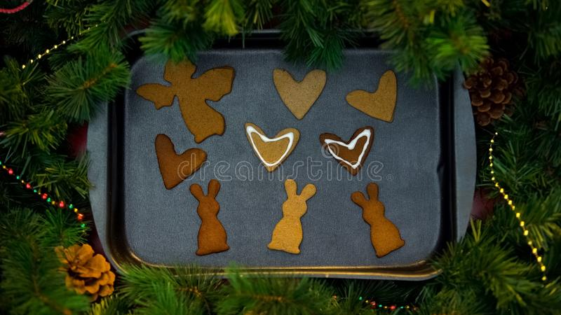 Decorated gingerbread cookies on baking tray with Xmas tree branches, holidays royalty free stock images