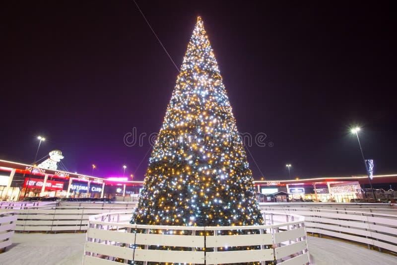 Decorated illuminating Christmas tree royalty free stock photos