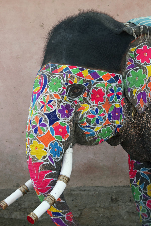 Download Decorated Indian Elephant stock photo. Image of colourful - 4789418