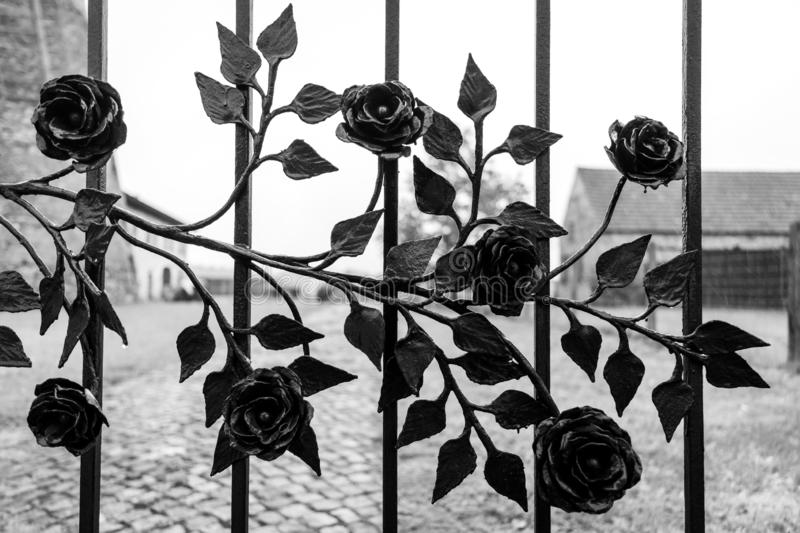 Decorated metal fence. royalty free stock images