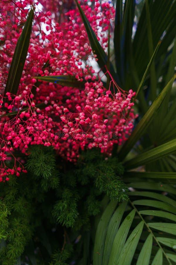 Decoratie van tropische die bladeren in heldere neonkleuren worden geschilderd stock foto