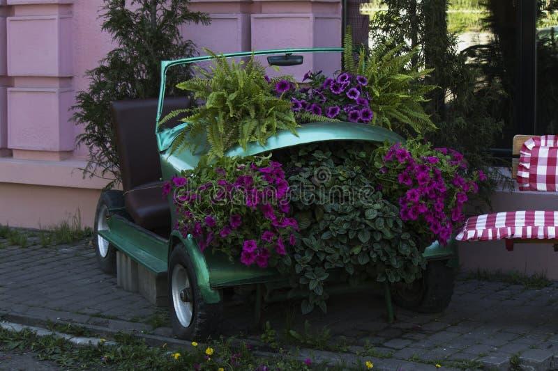 Decoratief bloembed in een groene retro auto royalty-vrije stock afbeelding