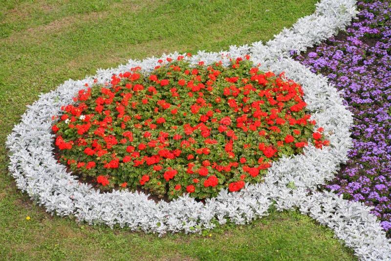 Decoratief bloembed in een stedelijk milieu royalty-vrije stock fotografie