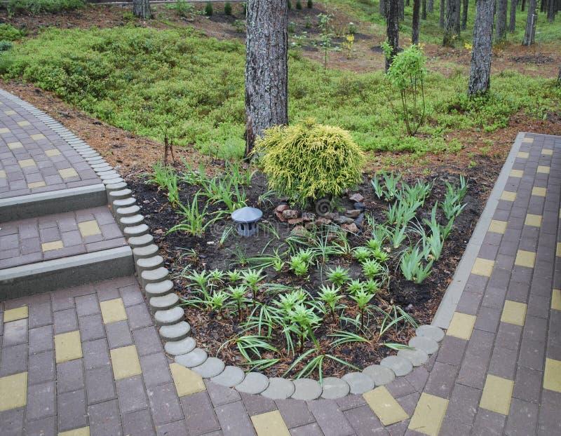 Decoratief bloembed landscaping royalty-vrije stock fotografie