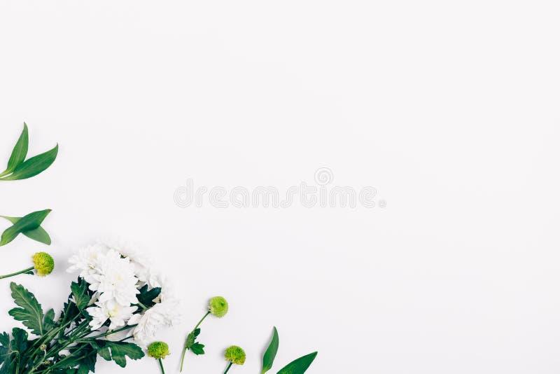 Decoratief hoekkader van groene bladeren stock fotografie