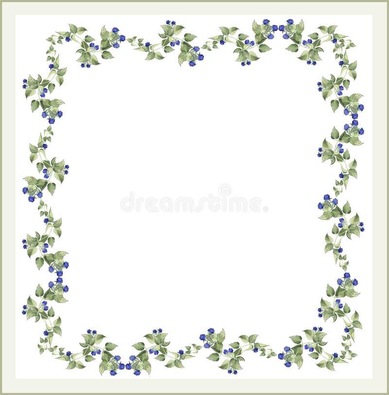 Decoratief kader met braambes. De kaart van de groet royalty-vrije illustratie