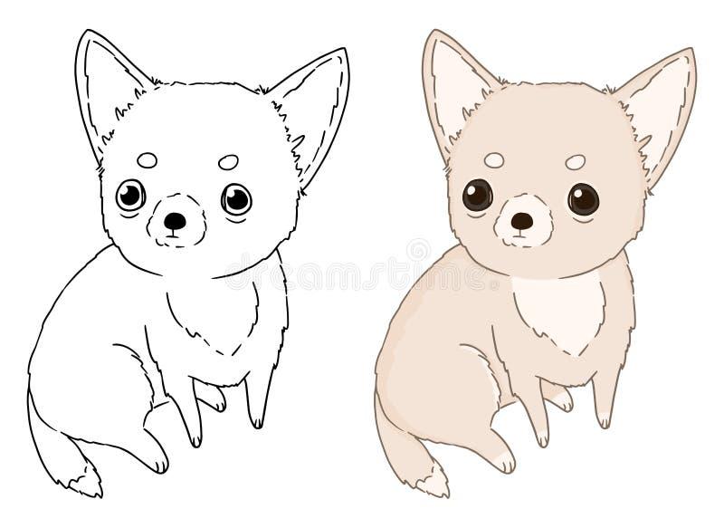 Decoratief portret van zittingshond Chihuahua, vector geïsoleerde illustratie op witte achtergrond Beeld voor ontwerp en kleurend vector illustratie