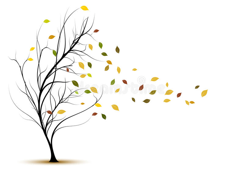 Decoratief vectorboomsilhouet in de herfst vector illustratie